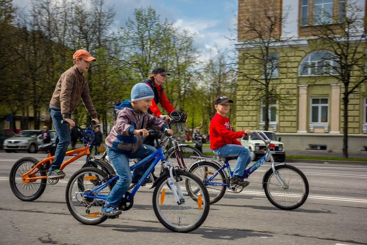 Ездить на велосипеде будут учить в школе