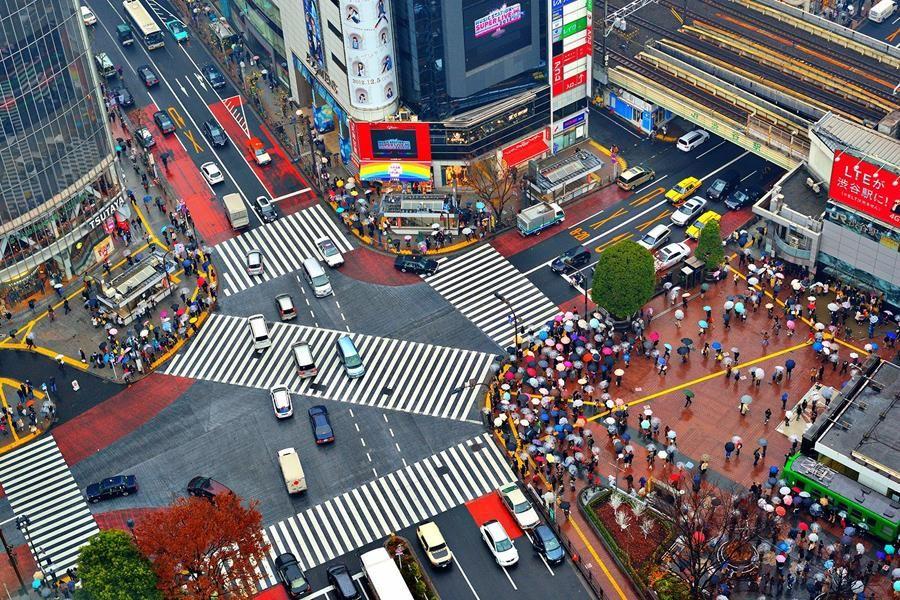 Пожилым японцам предложили добровольно сдать права