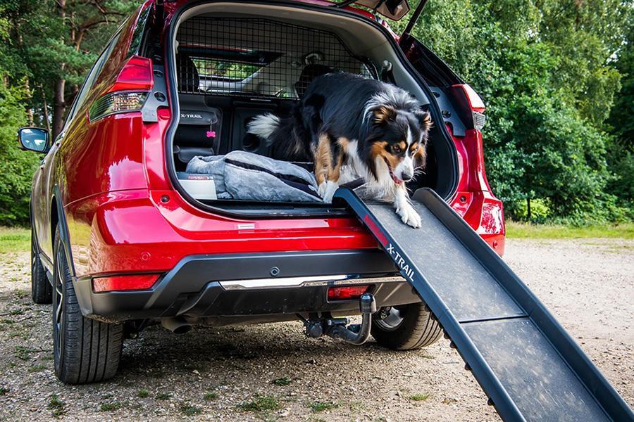Nissan X-Trail получил комплект аксессуаров для собак