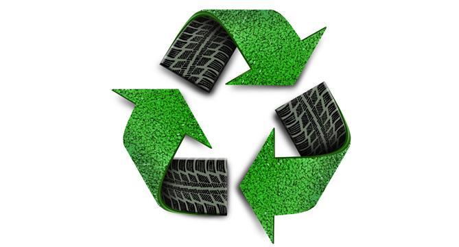 ЭкоШинСоюз реализует в Мурманске экологический проект