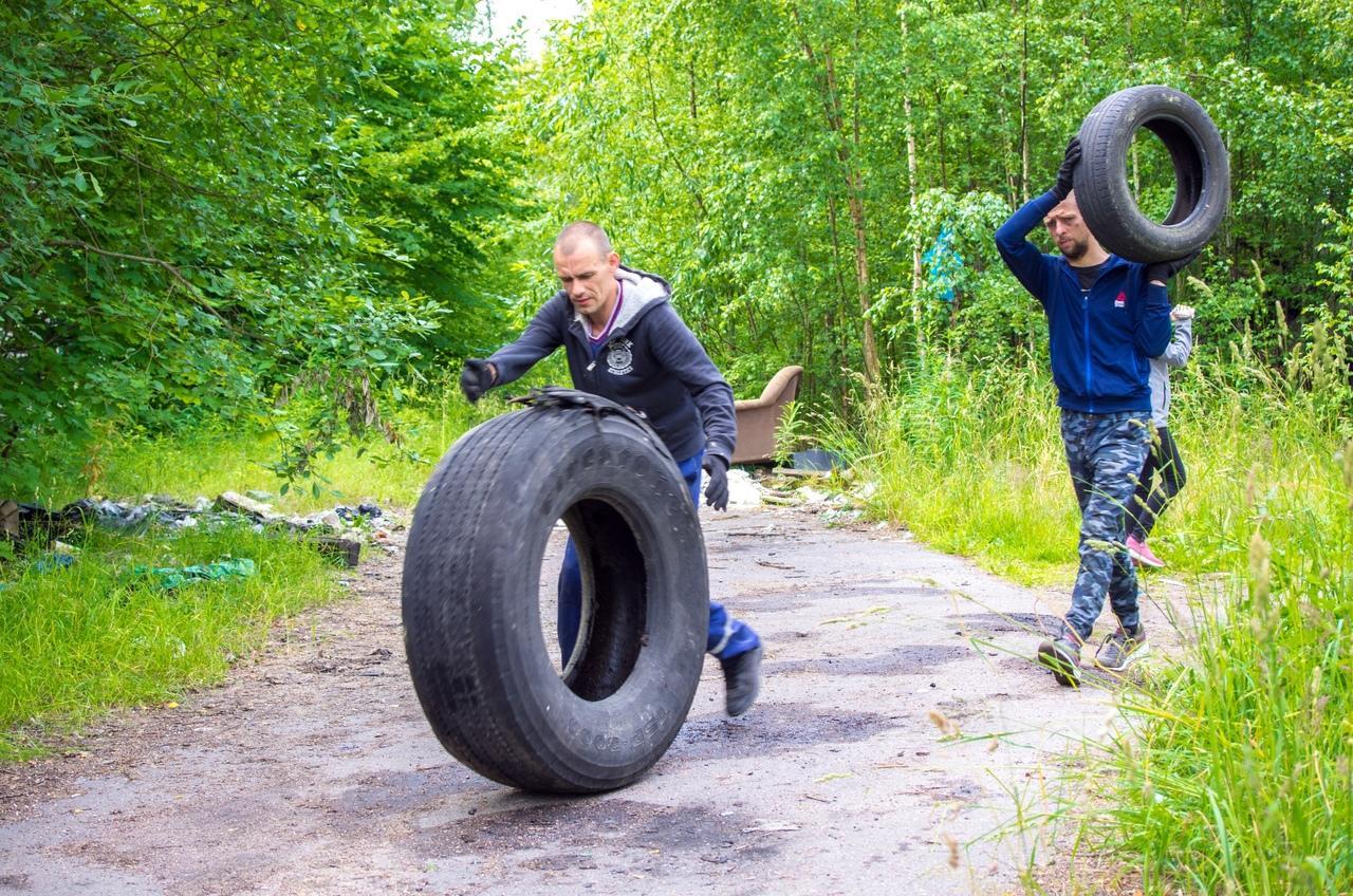 В Ленинградской области идет «Охота на колеса»