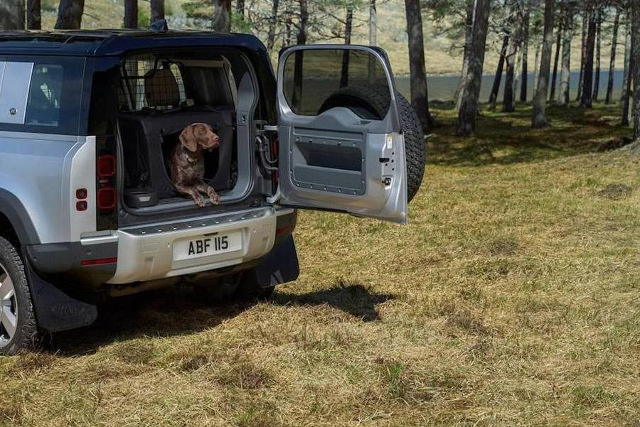 Jaguar Land Rover будет тестировать машины лапой лабрадора
