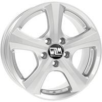 MSW 19 Full Silver